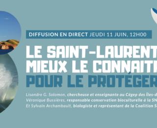 Conférence en direct: Le Saint-Laurent, mieux le connaitre pour le protéger